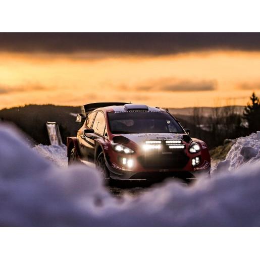 Прожектор светодиодный Lazerlamps Fiesta R5 4-Way Rally Lamp Pod 0064-4WBP-FIESTA